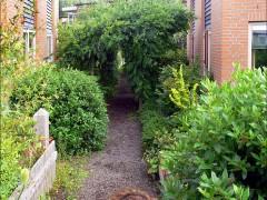 Czym są projekty ogrodów