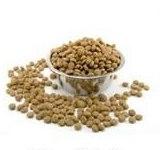 Jak wybierać karmy dla kotów?