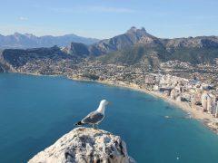 Wakacje w Hiszpanii – najlepszy wybór na urlop